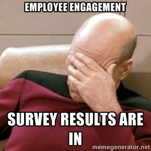 Going Beyond the Employee Engagement Survey