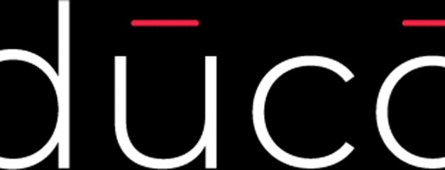 Duco Closes $1.7 Million Seed Round for Its Human Cloud for High-end Consultants